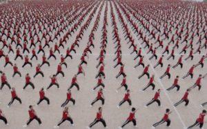 kung fu lugo, arti marziali, difesa personale, tradizione, combattimento